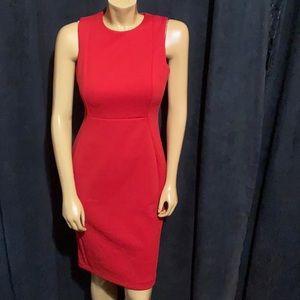 ‼️Ck Red Stunning Zip Back Dress
